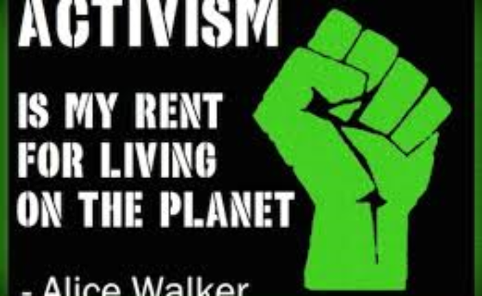 Activism: Theory and Practice